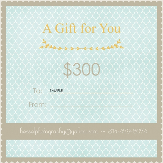 gift-certificate-$300--WEB