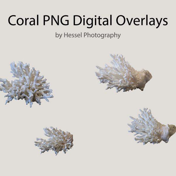 Coral-watermark
