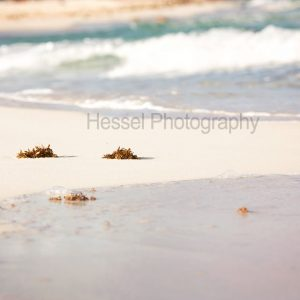 Mexico-Beach-watermark