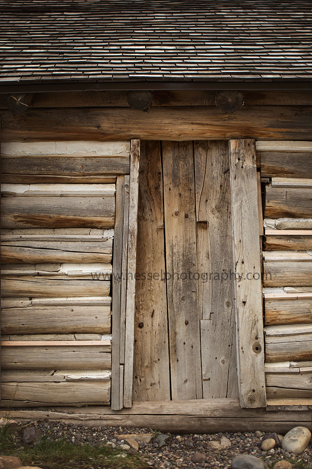 New Orleans La Photographer Barn Door Digital Backdrop New